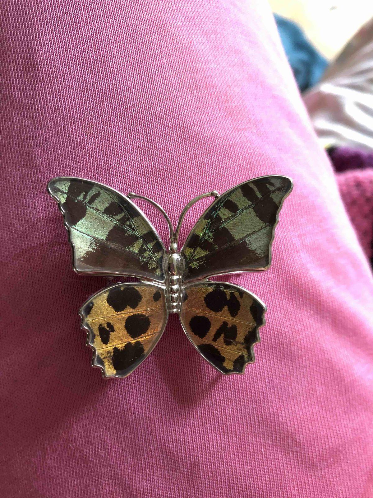 Чудесная бабочка
