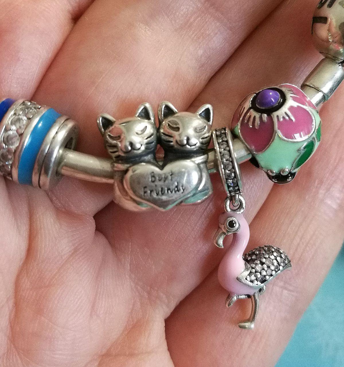 Милые кошечки — лучшие друзья