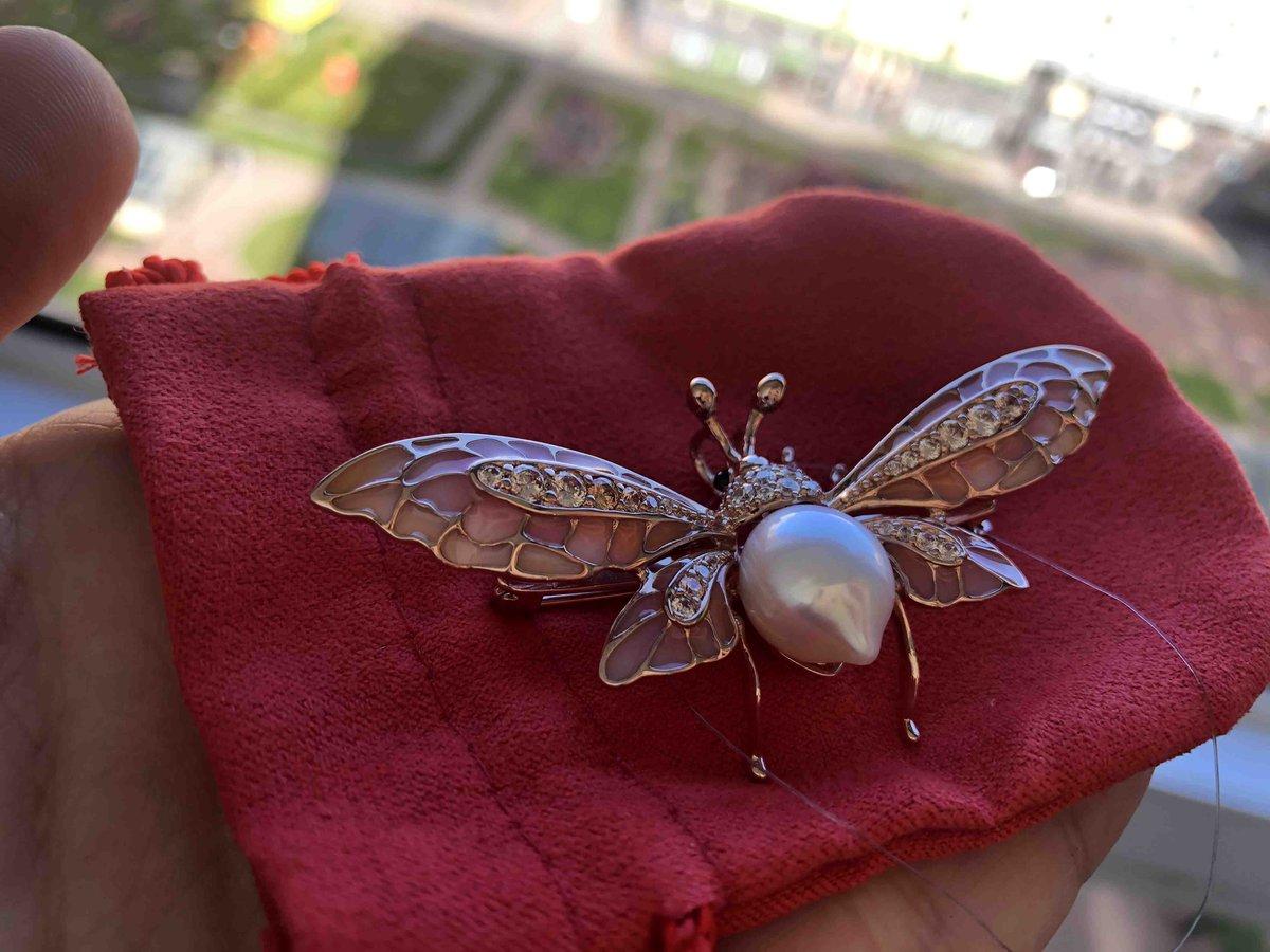 Сверкающий крылатый жук