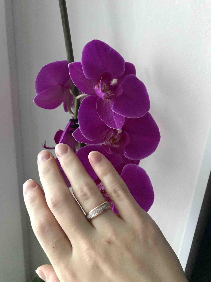 Розовое золото,16размер
