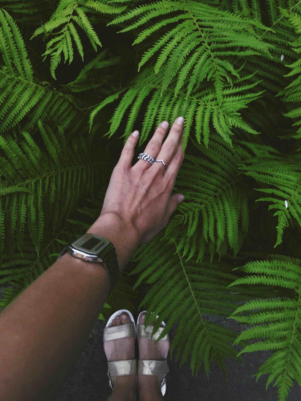 Самое красивое кольцо на свете😁
