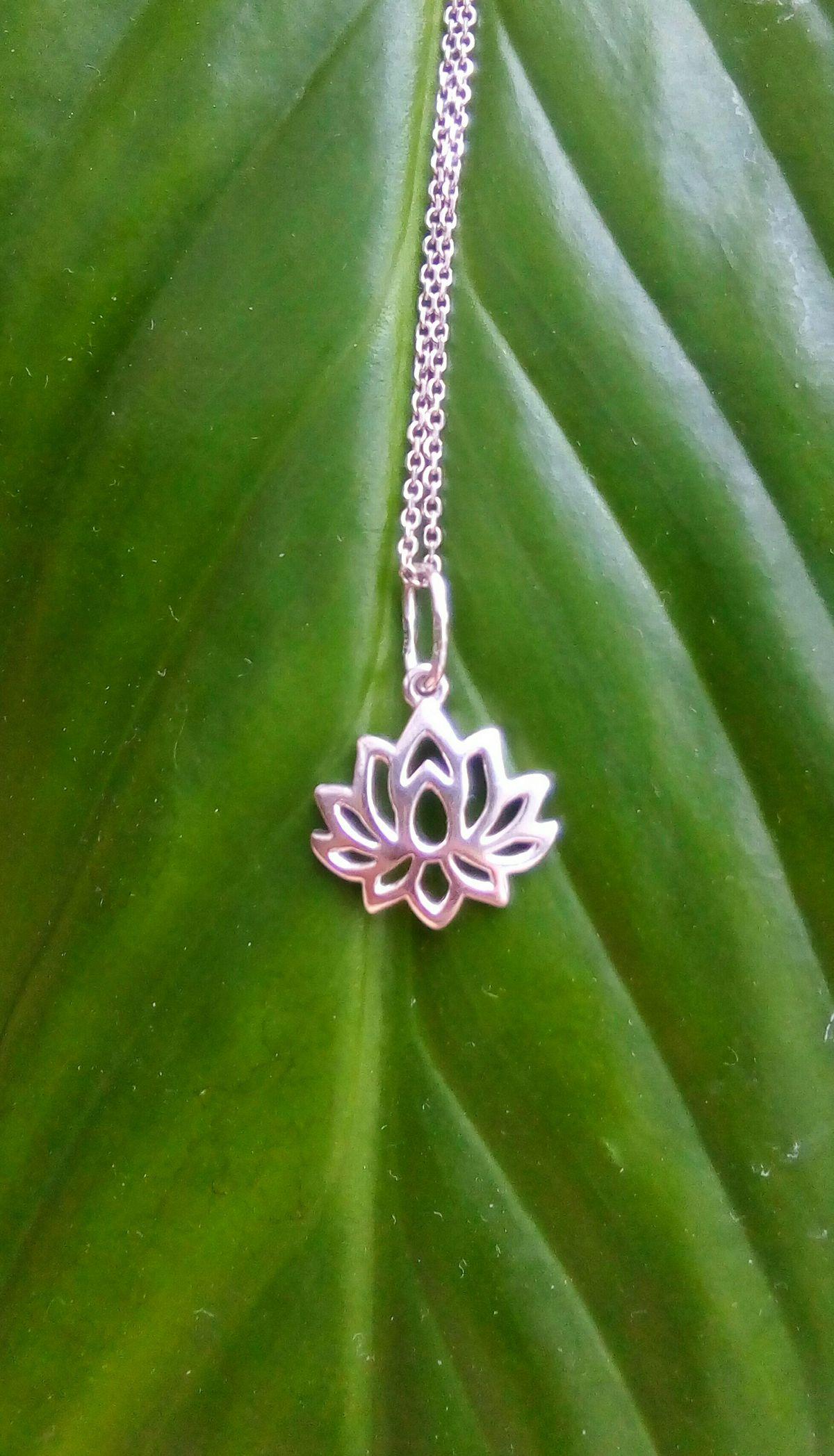 Изящный миниатюрный лотос - символ гармонии
